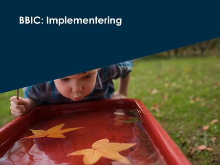 BBIC: Implementering.