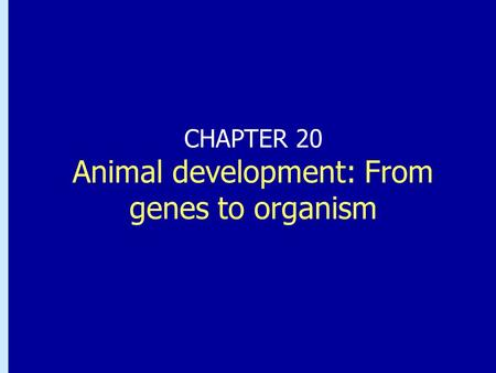 CHAPTER 20 Animal development: From genes to organism.