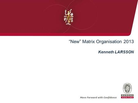 """New"" Matrix Organisation 2013"