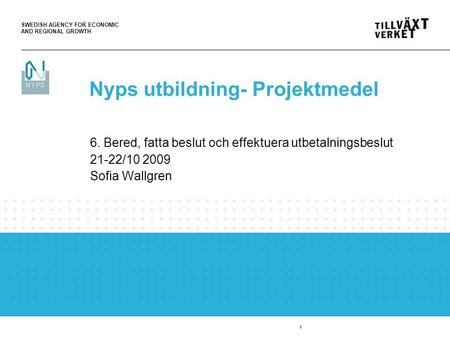 SWEDISH AGENCY FOR ECONOMIC AND REGIONAL GROWTH 1 6. Bered, fatta beslut och effektuera utbetalningsbeslut 21-22/10 2009 Sofia Wallgren Nyps utbildning-