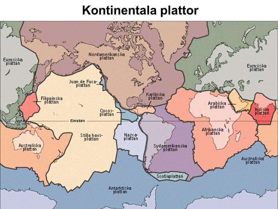Kontinentala Skölder Inaktiva regioner av gamla bergarter