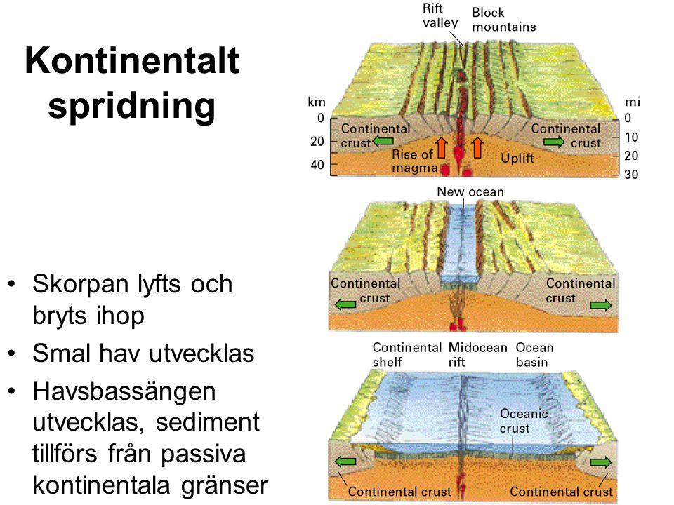 Kraften som driver plattektonik Värme från radioaktivt nedbryttning av ostabila isotoper I skorpan och manteln.