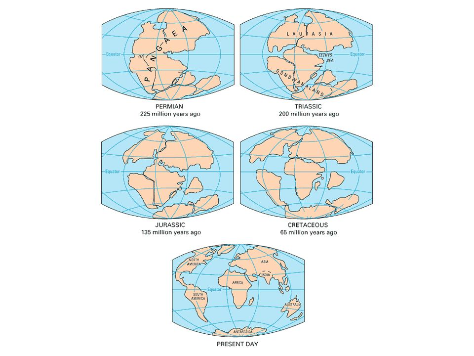 Continents of the Past During the 1960s, seismologists showed lithospheric plates are in motion Evidence based on magnetic data from the rocks on either side of plate boundaries.