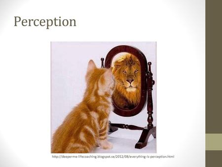 Perception http://deeperme-lifecoaching.blogspot.se/2012/08/everything-is-perception.html.