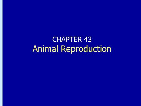 "CHAPTER 43 Animal Reproduction. Könscellers utveckling (gametogenes) 1. ""germ cells"" 2. oogonier eller spermatogonier (2n) i fostret 3. Primära oocyter/spermatocyter."