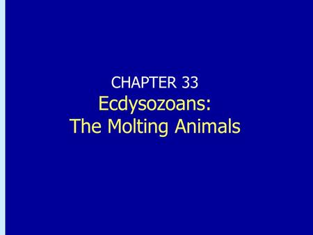 Chapter 32: Ecdysozoans: The Molting Animals CHAPTER 33 Ecdysozoans: The Molting Animals.