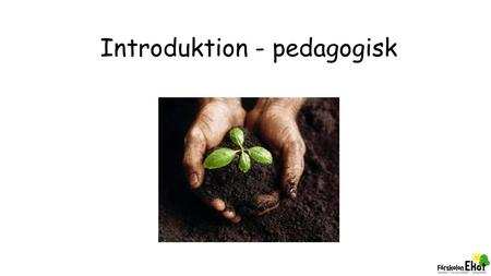Introduktion - pedagogisk. Organisation & roller.