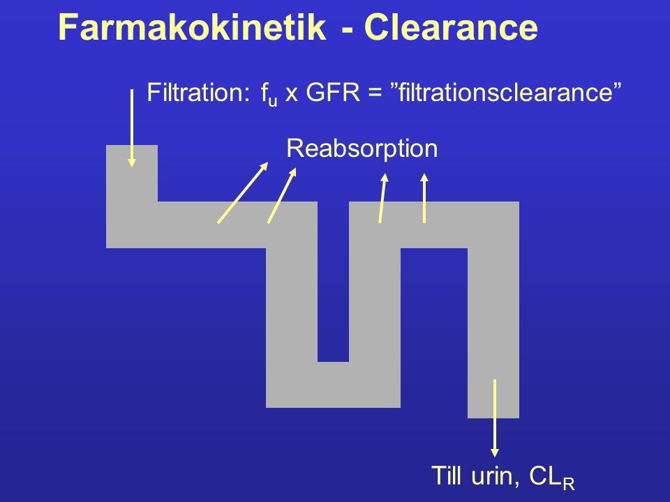 Farmakokinetik - Clearance Om CL R < f u x GFR sker reabsorption.