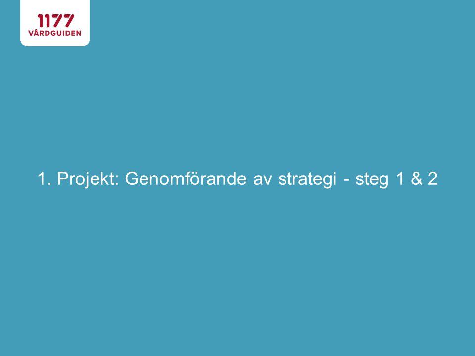 Projekt: Genomförande av strategi - steg 1 & 2 Uppdrag SKL har ansökt om finansiering från Socialdepartmentet för att möta nya förutsättningar som kommer med den nya patientlagen.
