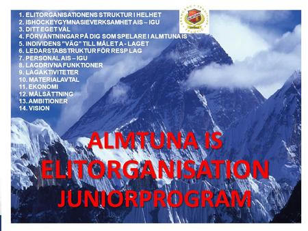 ALMTUNA IS ELITORGANISATION JUNIORPROGRAM 1. 1. ELITORGANISATIONENS STRUKTUR I HELHET 2. ISHOCKEYGYMNASIEVERKSAMHET AIS – IGU 3. DITT EGET VAL 4. FÖRVÄNTNINGAR.