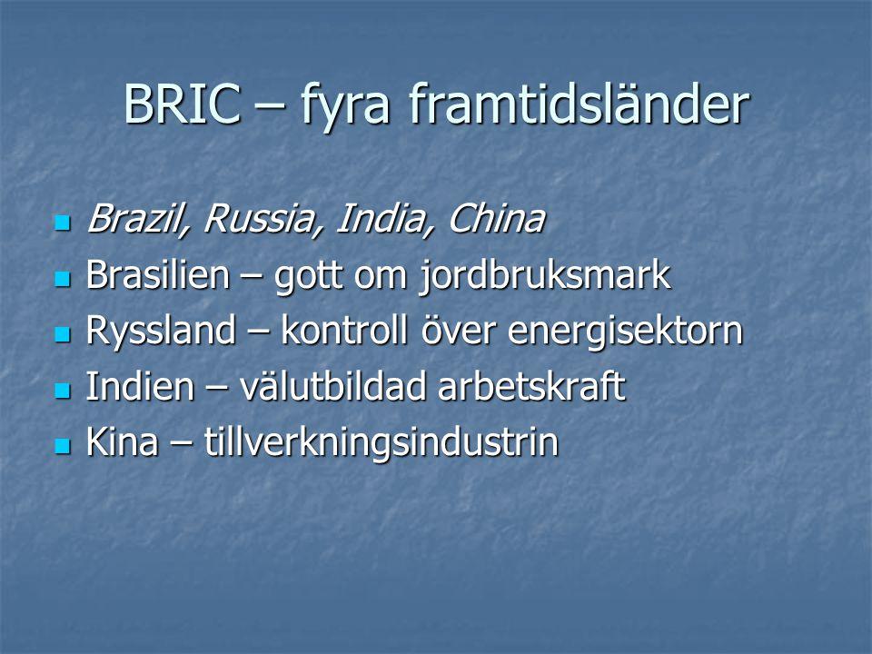 BRIC-länderna – inga paradis  Kina och Indien har mycket svår fattigdom  I Kina, Indien och Ryssland är politik ett farligt spel – ett svagt rättssystem, stora inslag av korruption  Ryssland och Kina är auktoritära stater där individen har små rättigheter och den härskande klassen har en auktoritär syn på samhället