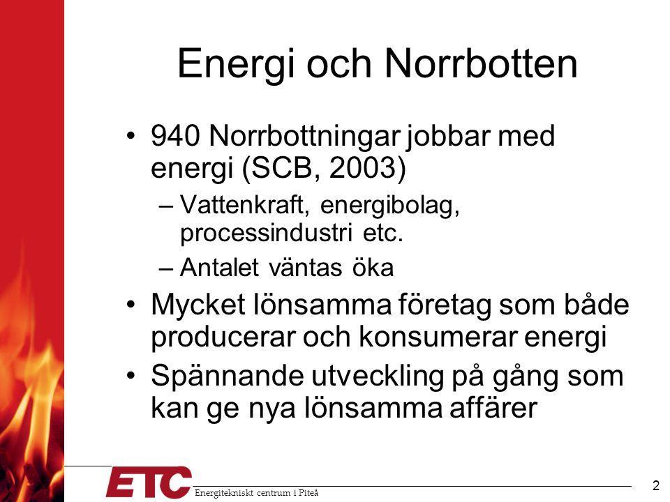 Energitekniskt centrum i Piteå 3 Energikompetens i Norrbotten ETC FoU-hotell, tillämpad forskning, pilotanläggningar, konsulttjänster, industriuppdrag, utredningar Norrbottens Energikontor Nätverk, initiering/ledning av projekt, framtagande av underlag, statistik, informationsspridning Glommers Miljöenergi Försöksstation för biobränsle, rådgivning, produktutveckling, pelletstillverkning och distribution LTU Undervisning, forskning Industrin LKAB, SSAB, Kappa, m.fl.