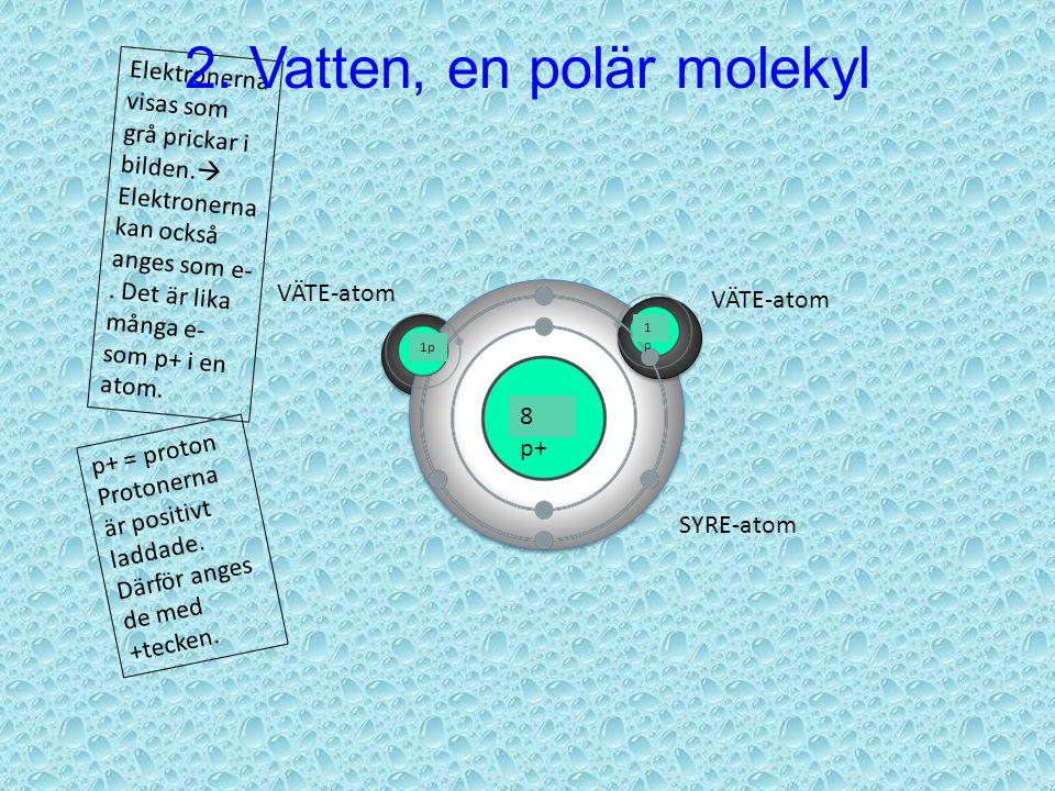 VÄTE-atom SYRE-atom 8 p+ 1p 1p1p p+ = proton Protonerna är positivt laddade.