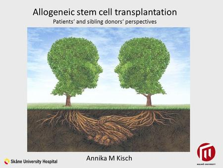 Allogeneic stem cell transplantation Patients' and sibling donors' perspectives Annika M Kisch.