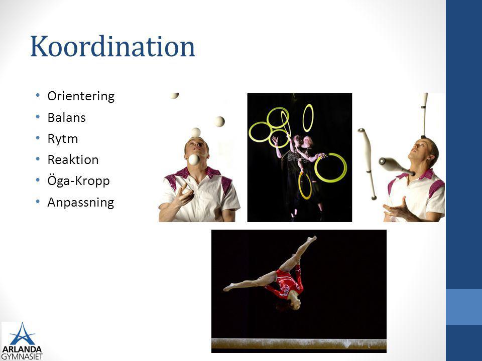 Koordination Generell koordination Agility Allsidighet Nervvägar Tidig specialisering ger mindre rörelsebank Teknik Inlärning 5 faser: Tillvänjning Grovkoordination Finkoordination Automatisering Anpassning Din stil: egen teknik Kroppsmedvetenhet och feedback