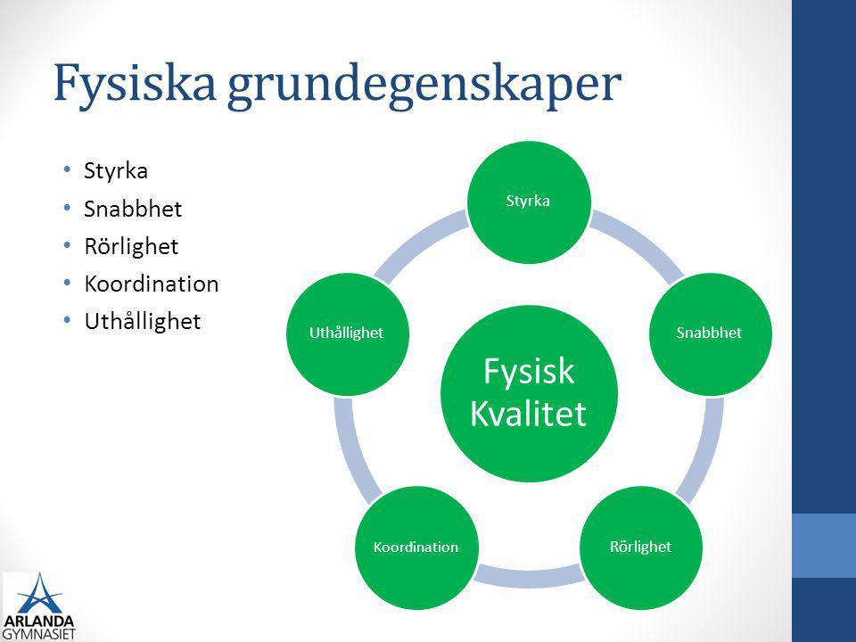 Kravprofil Fysiska kvaliteter Psykiska egenskaper Tekniska färdigheter Koordinationsförmåga Taktiska färdigheter Sociala egenskaper