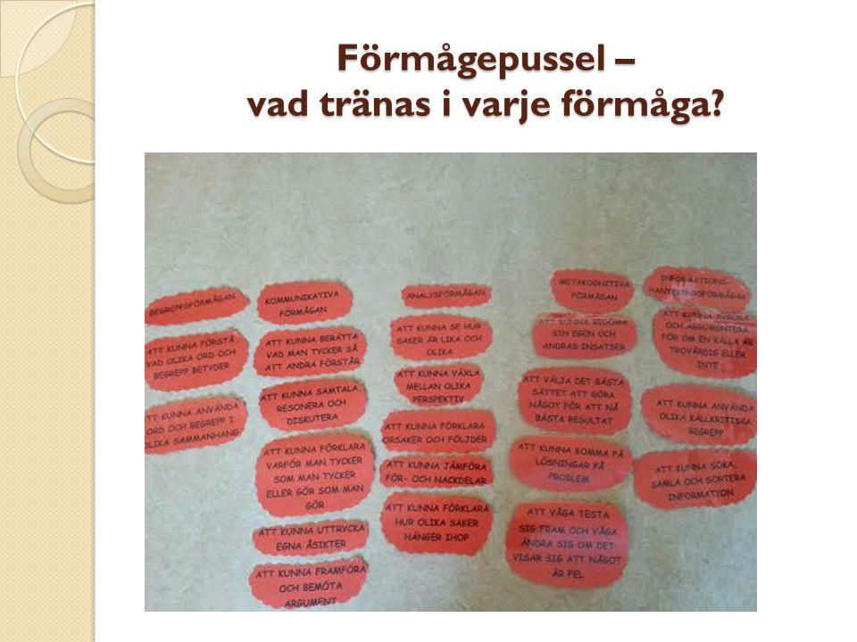 Synligt lärande – framgångsfaktorer enligt Hattie Tydligheten i lärandemålen med specificeringar av kriterier för måluppfyllnad – Planering m kunskapskrav Användningen av flera ändamålsenliga undervisningsstrategier – Lektionsupplägg/övningar Ett synligt lärande och undervisning som utgår från elevens perspektiv – Var befinner sig eleven och vad är målet, hur tar vi oss vidare (delmål).