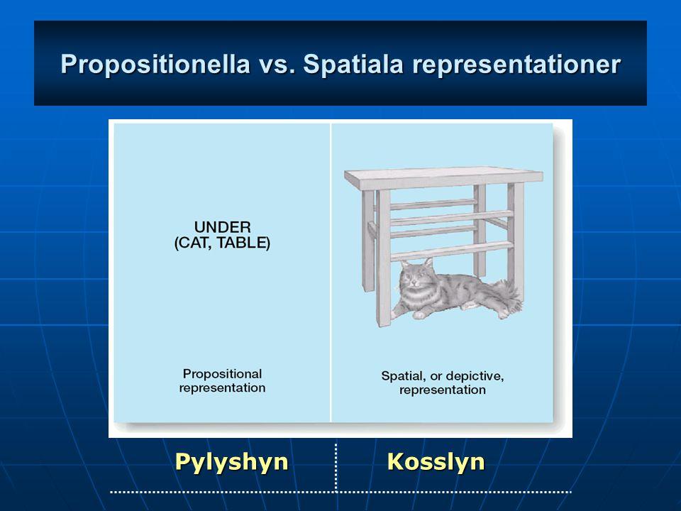 Pylyshyn Visualisering representeras propositionellt, via symboler, eller symbolliknande koder.
