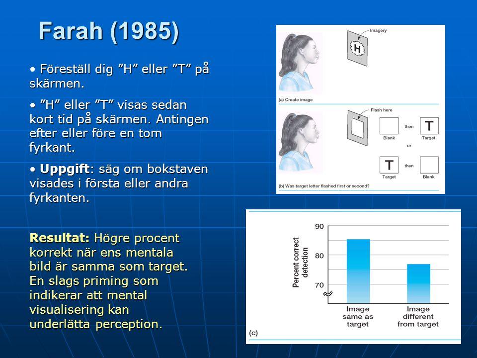 Neurokognition och mental visualisering En del (t ex Farah, 1988) menar att visualiseringsdebatten kan närma sig ett slut genom neurokognitiva studier.