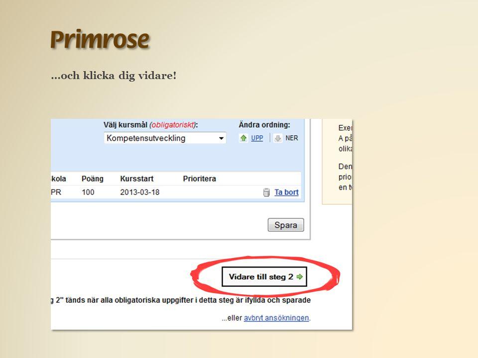 Här kan du fylla i e-postadress och telefonnummer om du inte gjorde det tidigare.