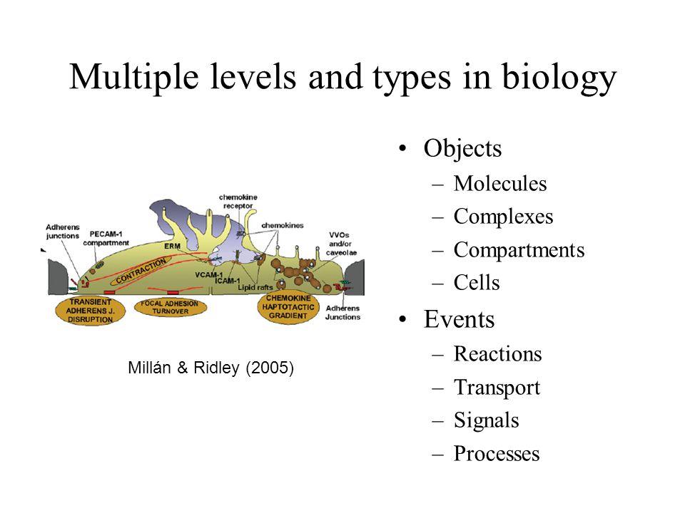 (Computable) information Molecular properties Macroscopic structure, dynamics Theory Explanation Prediction