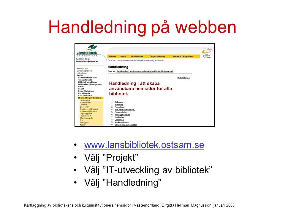 Kartläggning av bibliotekens och kulturinstitutioners hemsidor i Västernorrland, Birgitta Hellman Magnusson, januari 2006 Min utgångspunkt för kartläggningen (2)