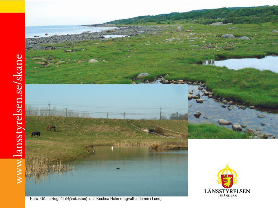 Våtmarksstrategi för Skåne Lokalt: Reservera - översiktsplaneringen Knyta samman - se möjligheterna i grönstrukturplanering, i LBU och tätortsutveckling Samarbeta – vattenråd Skydds- & kompensationsåtgärder Utnyttja ägandet