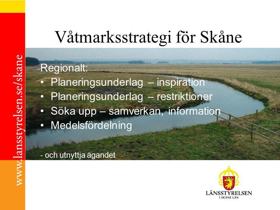 Framgångsfaktorerna i våtmarksarbetet Förankring Rätt väg framåt Etappindelning (Våtmarkskedjan) Resurser etappvis