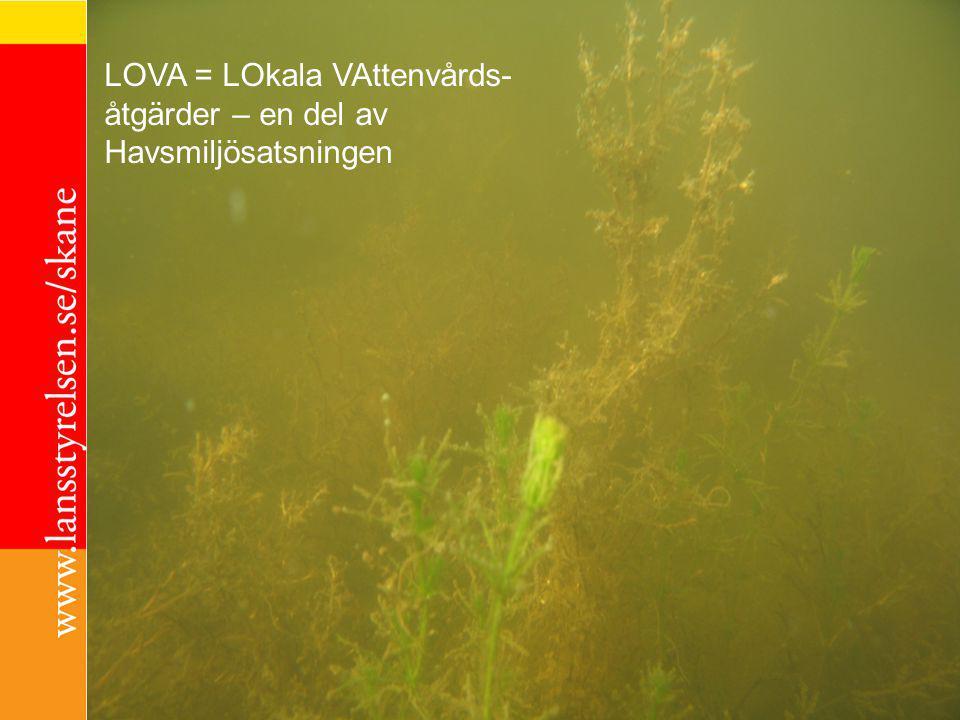 För kontinuerlig kontakt i våtmarks- och vattenfrågor Anmäl dig gärna till den öppna grupp för samverkan som finns inom Hållbar Utveckling Skåne.