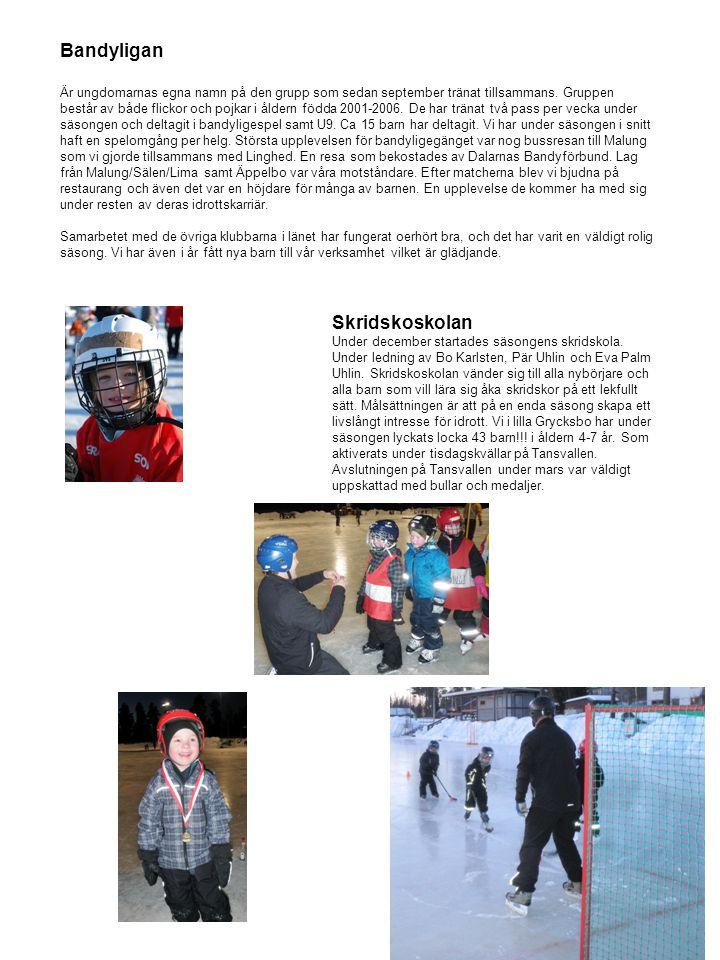 Nyårsbandy Team Fartrand segrare 2010 Årets nyårsbandy är genomförd.