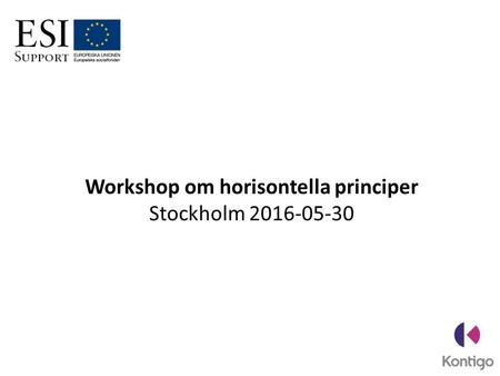 Workshop om horisontella principer Stockholm 2016-05-30.