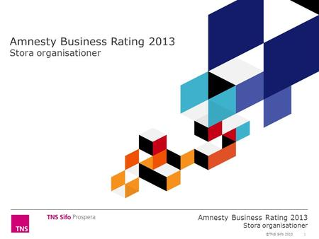 1 Amnesty Business Rating 2013 Stora organisationer ©TNS Sifo 2013 Amnesty Business Rating 2013 Stora organisationer.