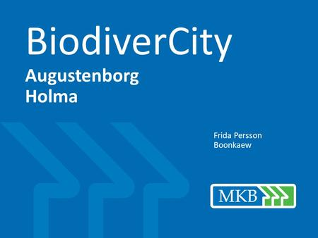 BiodiverCity Augustenborg Holma Frida Persson Boonkaew.