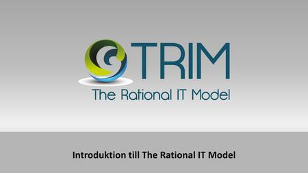 Introduktion till The Rational IT Model