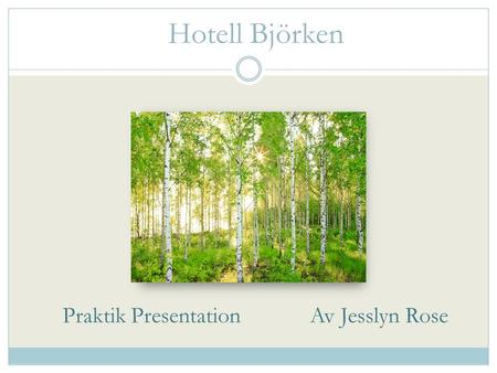 Praktik Presentation Av Jesslyn Rose