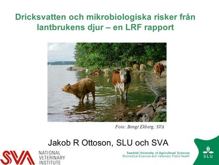 Swedish University of Agricultural Sciences Biomedical Sciences and Veterinary Public Health Dricksvatten och mikrobiologiska risker från lantbrukens djur.