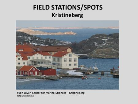 FIELD STATIONS/SPOTS Kristineberg Sven Lovén Center for Marine Sciences – Kristineberg Foto Linus Hammar.