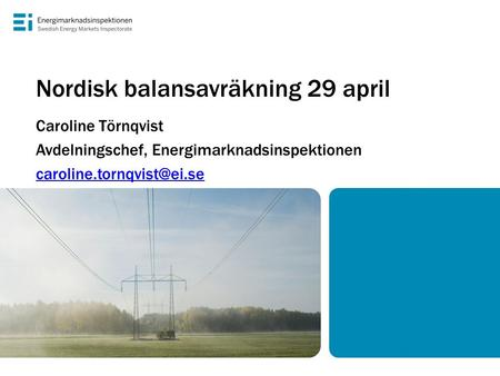 Nordisk balansavräkning 29 april