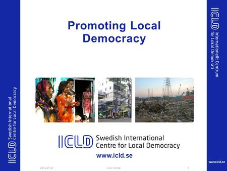Promoting Local Democracy