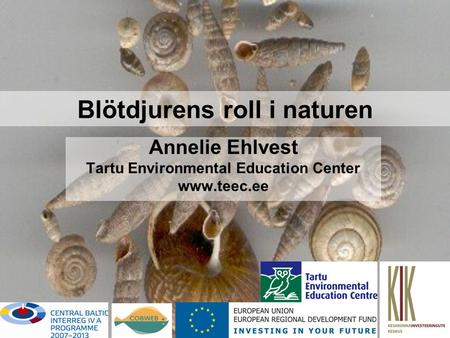 Blötdjurens roll i naturen Annelie Ehlvest Tartu Environmental Education Center www.teec.ee.