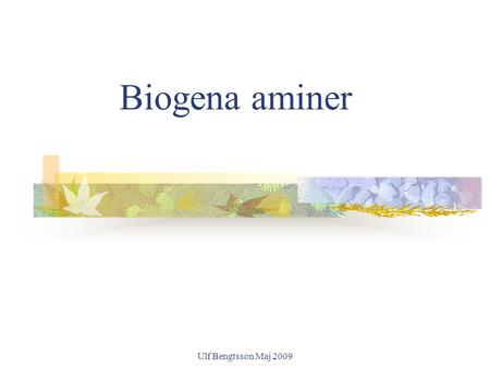 Ulf Bengtsson Maj 2009 Biogena aminer. Ulf Bengtsson Maj 2009 Physiological Functions of histamine Histamine is a biologically very active substance,