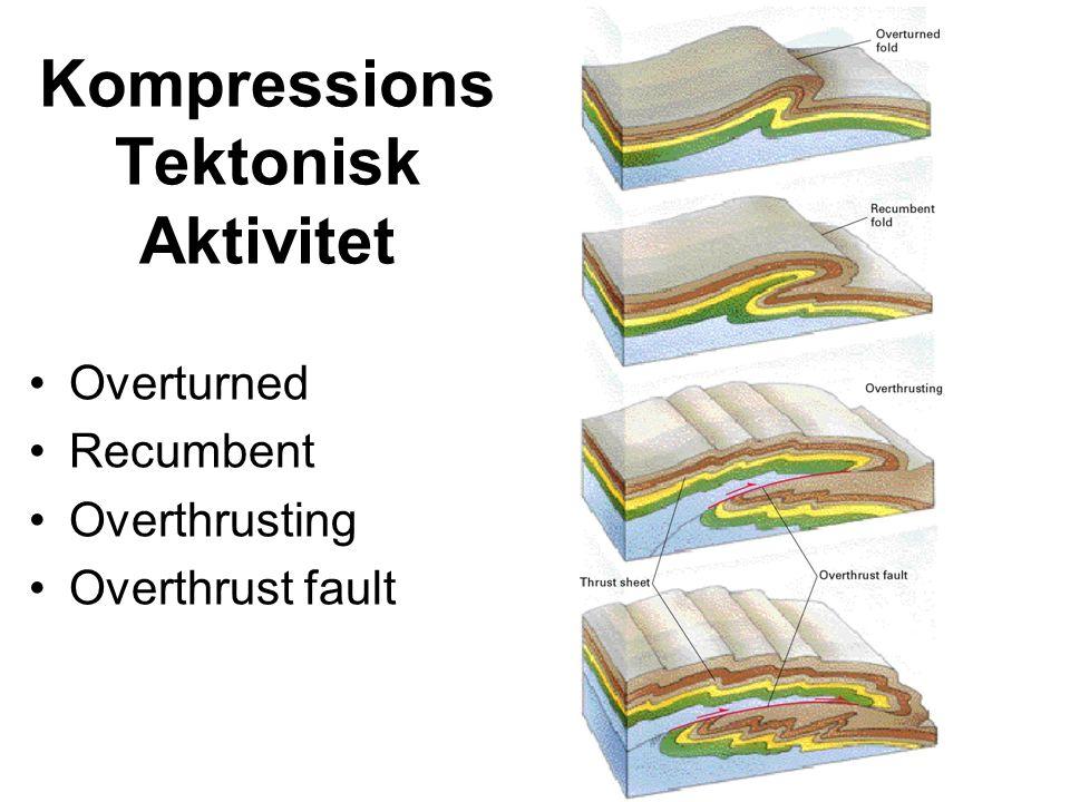 Kompressions Tektonisk Aktivitet