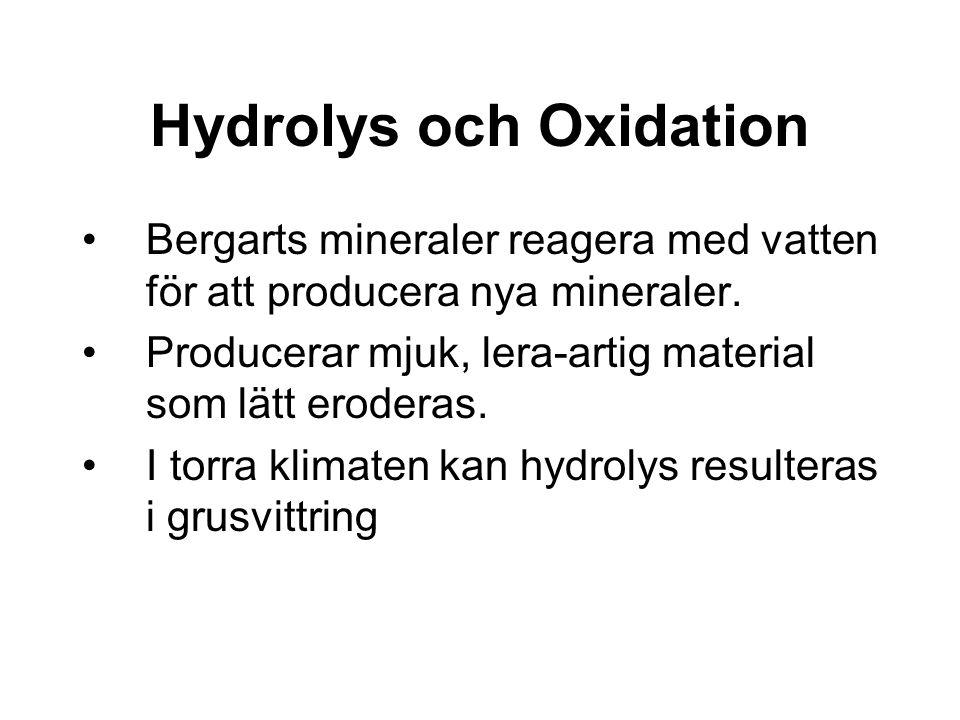 Hydrolys och Oxidation