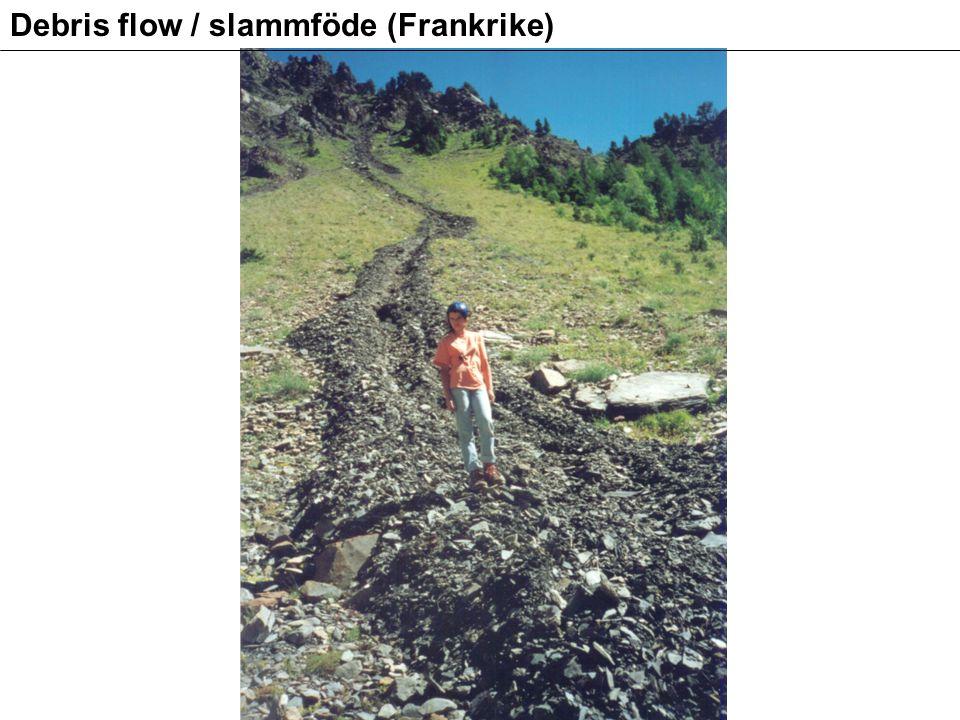 Debris flow / slammföde (Frankrike)