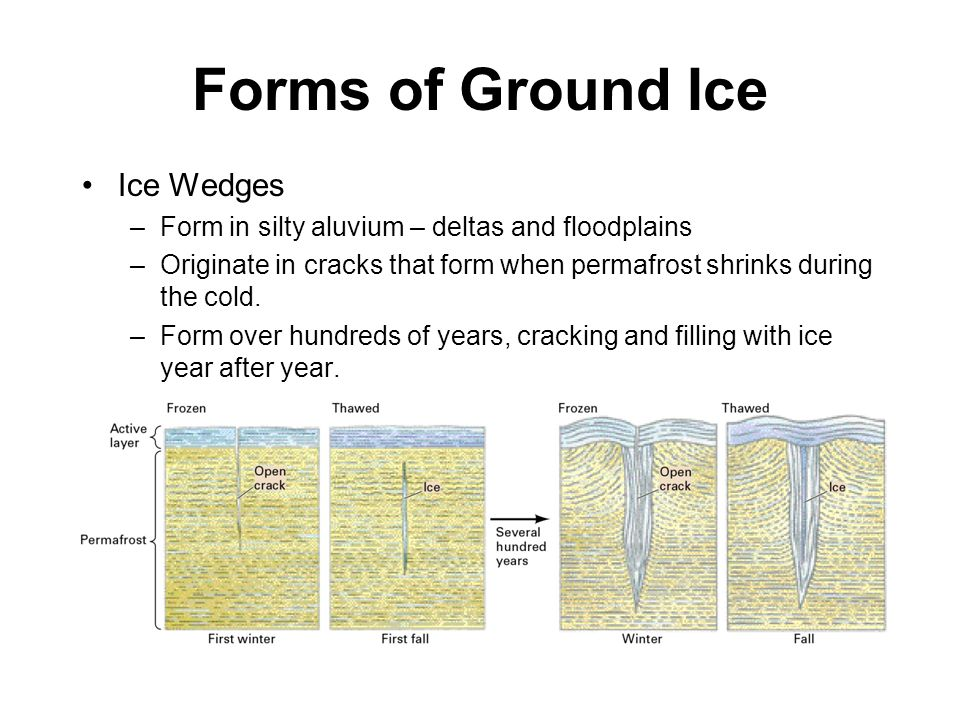 Forms of Ground Ice Ice Wedges