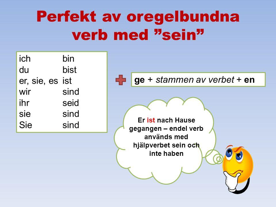 Perfekt av oregelbundna verb med sein
