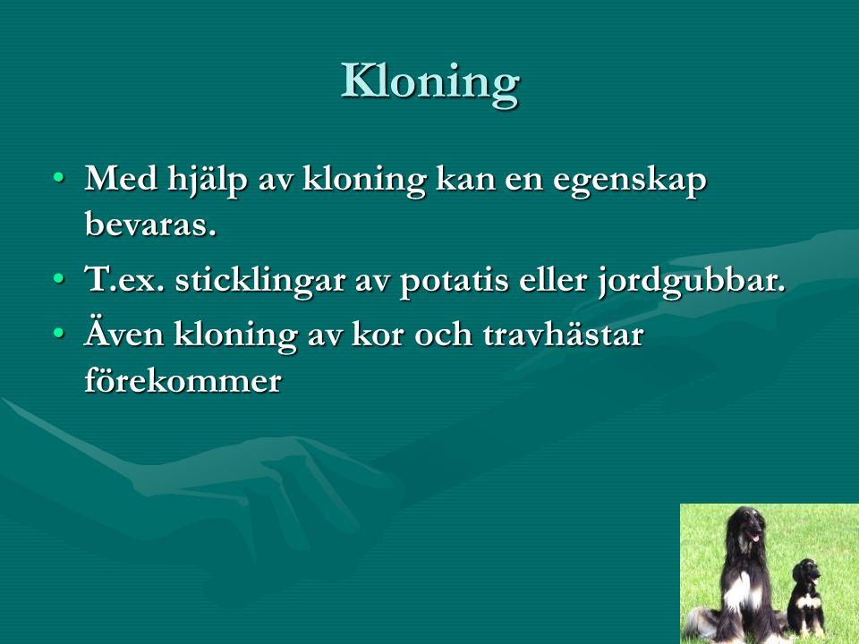 Kloning Med hjälp av kloning kan en egenskap bevaras.