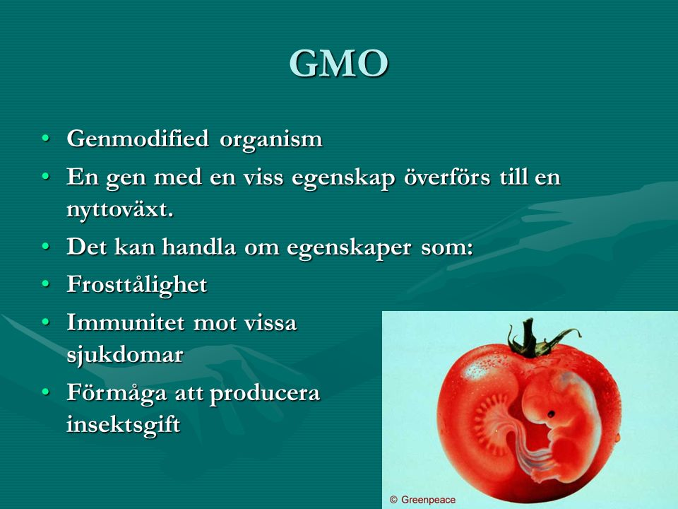 GMO Genmodified organism