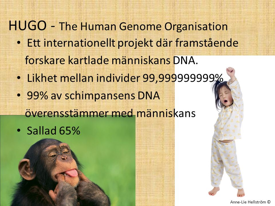 HUGO - The Human Genome Organisation