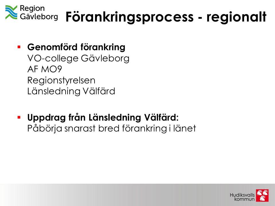 Förankringsprocess - regionalt